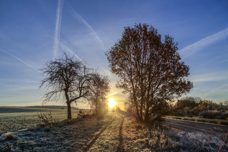 hesse: sunrise in winter with hoar frost in the fields and blue sky
