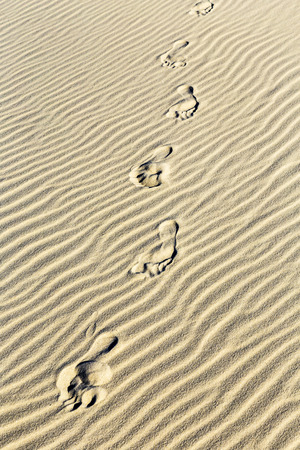 Abstract  background of sand ripples at the beach with prints of feet photo
