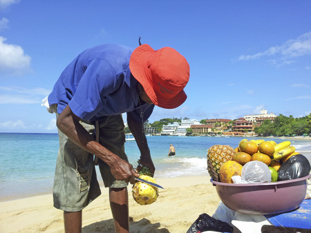 NAGUA, DOMINICAN REPUBLIC - APRIL 2, 2014  man sells ananas at the beach in Nagua, Dominican Republic   Real estate tourism alone accounted for USD 1 5 billion in earnings for 2007