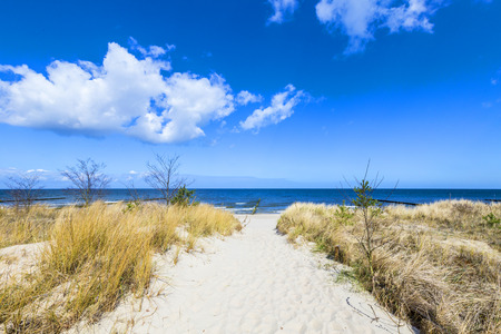 schleswig holstein: levee with sandy path to beach at baltic sea