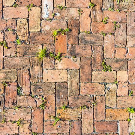 weed block: red brick floor background in harmonic pattern Stock Photo