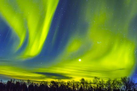 Noorderlicht (Aurora Borealis) over opnamen in de sneeuw.