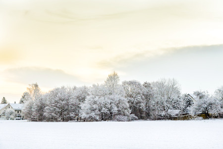 snow covered fields with settlement at the horizon in Munich,Germany photo