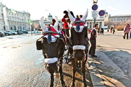 VIENNA, AUSTRIA - NOV 27, 2010: driver of the fiaker dressed as Santa Claus in Vienna, Austria. Since the 17th century, the horse-drawn carriages characterize Viennas cityscape. Editorial