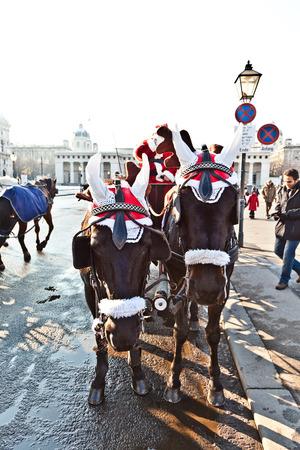characterize: VIENA, Austria - 27 de noviembre de 2010: controlador de la fiaker vestido como Santa Claus en Viena, Austria. Desde el siglo 17, los carruajes tirados por caballos caracterizan Viena paisaje urbano.
