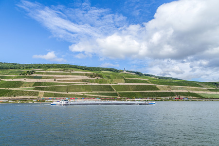 BINGEN, GERMANY - SEP 15, 2013: freight ship passes the vineyards at the Niederwald memorial at river Rhine in Bingen, Germany. The lovely rhine valley is a world heritage site.