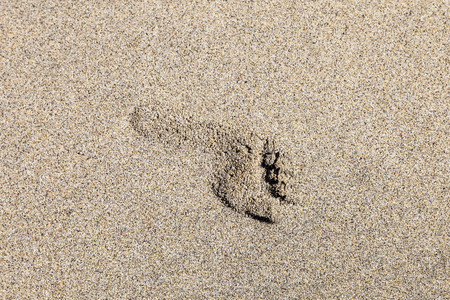footstep: human footstep in the sand of the beach