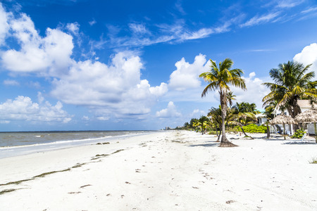 myers: beautiful beach at Fort Myers in america