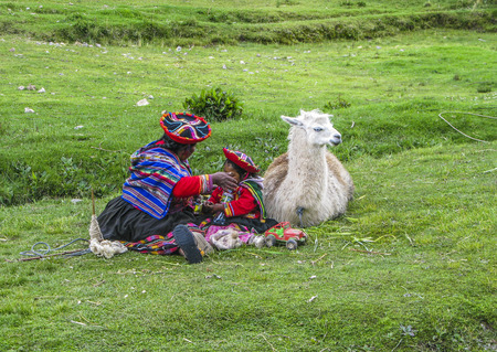 sittting: CUSZO, PERU - JAN 16, 2015: indian woman with her child and a lama pose  for tourists in Cuzco, Peru to earn some money.