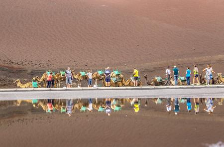 timanfaya: TIMANFAYA NATIONAL PARK, LANZAROTE ISLAND - NOV 12, 2014: Caravan of camels with tourists in Timanfaya National Park. Camel trek is popular attraction on Lanzarote island. Editorial