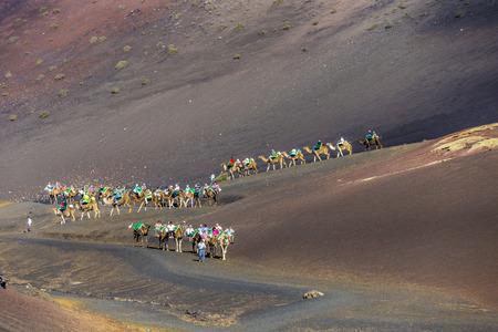 timanfaya: YAIZA, SPAIN - NOV 15, 2014: tourists on a camel safari in Timanfaya National Park in Yaiza, Spain. Camel riding in Timanfaya is a must for tourists. Editorial