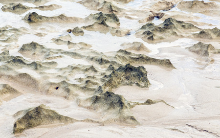 scenic beach dunes created by the low tide photo