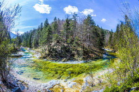 upper austria: forest at bad Ischl in upper austria with small river under blue sky Stock Photo