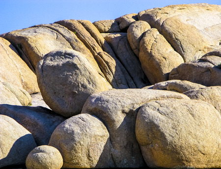 joshua tree national park: joshua tree with rocks in Joshua tree national park under blue sky