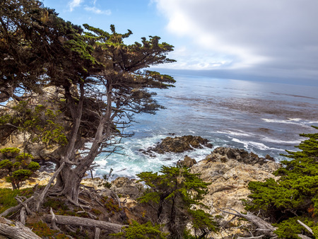ocean state: View of rocky cliffs above the Pacific Ocean at Point Lobos State Natural Reserve, in Carmel, California