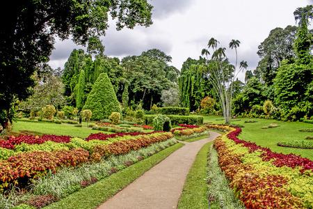 ペラデニヤ植物園ガーデン、カンディ