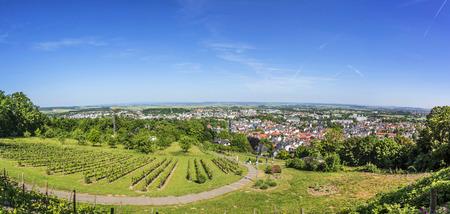 hesse: panorama of Bad Nauheim from the hills with vineyard