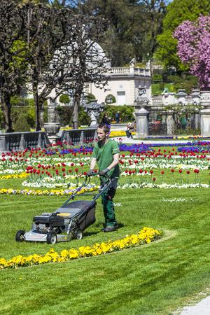 mover: SALZBURG, AUSTRIA - APR 21, 2015:  lawn mover machine prepares the green in Mirabelle Gardens in Salzburg, Austria. The gardener is employed by the city of Salzburg. Editorial