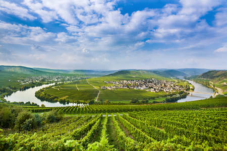 mosel: famous Moselle Sinuosity in Trittenheim, Germany Stock Photo