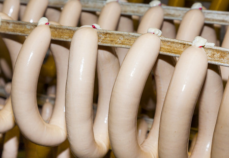 slaughter: sausages are drying after cooking in hot water in the slaughter house