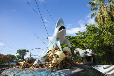 west usa: KEY WEST, USA - AUGUST 26, 2014: car with a sculpture of a shark and skull and plastic shells on the roof. The sculptures symbolize the ocean and the fun car is registered for driving.