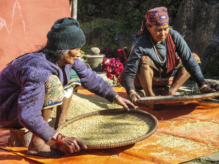 thresh: BHAKTAPUR, NEPAL - DEC 2, 2013: old nepalese women clean the corn in traditional way with baskets. Handmade threshing is still common in Nepal. Editorial
