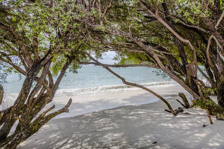samet: tropical beach in Koh Samet, Thailand with trees Stock Photo