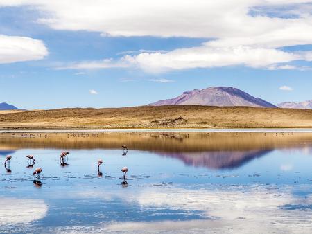 avaroa: Laguna Kara salt lake with reflection of the mountain, Eduardo Avaroa Andean Fauna National Reserve, Bolivia