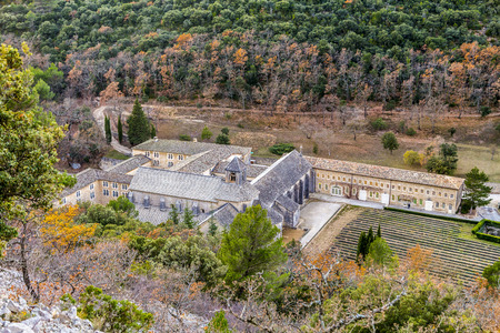vaucluse: aerial of Senanque abbey in the  Provence, France