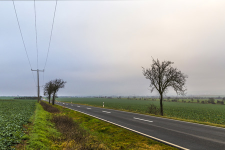 wide  wet: leaveless trees in winter inrural area with plowed fields