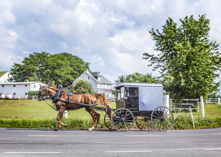 LANCASTER, USA - JULY 13, 2010: amish people ride in their horse carts in Lancaster, USA. Amish people don't use electricity as well as cars. They life the traditional way of the 17th century. 에디토리얼