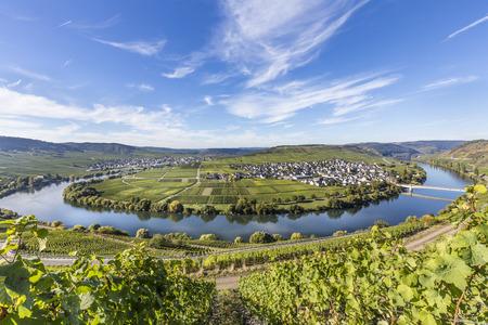 Famous Moselle river loop in Trittenheim, Germany. Standard-Bild