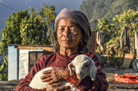 JOMSON, NEPAL - DEC 2, 2013: portrait of old nepalese woman. She wears the  young lamb in her hands. Editorial