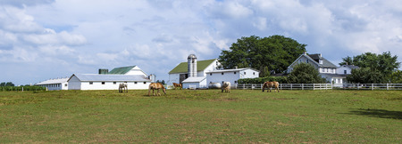 amish: FARMSTEAD, USA - JULY 13, 2010: typical amish farm house with silo ang grazing horses Editorial