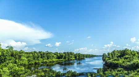 untouched: view to the river Missisippi with its wide river bed and untouched nature in Louisiana Stock Photo