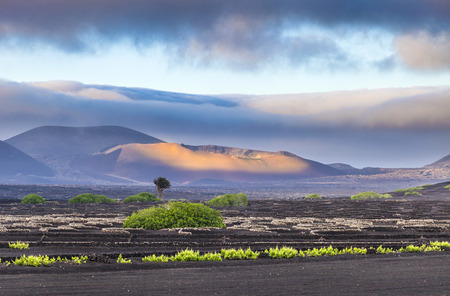 extinguished volcanoes in Timanfaya National Park, Lanzarote Stock Photo
