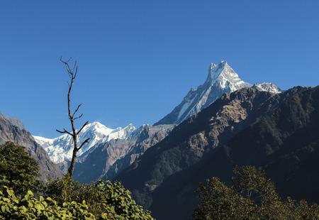 view to mountain  Machapuchare in the Annapurna Sanctuary area Banco de Imagens
