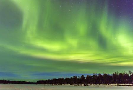 雪景色の上北極光 (オーロラ)。