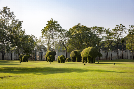 bushes cut to animal figufres in the park of Bang Pa-In Palace near Bangkok, Thailand (Summer Palace of the Thai king) near Ajuttaya Stock Photo