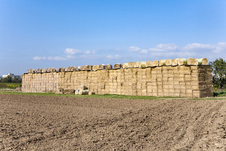 stapled: bale of straw after harvest stapled at the field Stock Photo