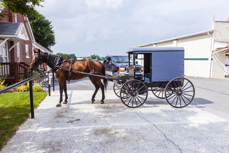LANCASTER, USA - JULY 13, 2010: A horse pulling cart of amish people parks at a parking lot in Lancaster, USA..