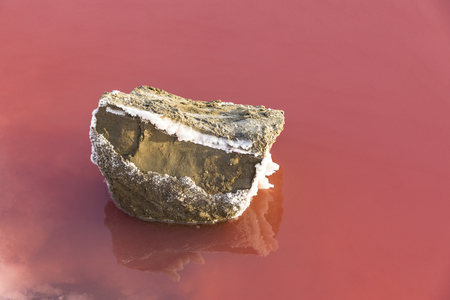 detail of  red Salt lake at Salin de Aigues-Mortes in the Camarque, France Banco de Imagens
