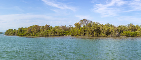 camargue: the river rhone delta in the camargue. Wild animals live in that area. Stock Photo