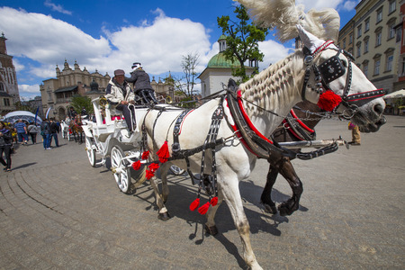 KRAKOW, POLAND - MAY 4, 2014: Horse-drawn carriage at the Market Square, standardized the color, total length of no more than 7.0 m, can be harnessed to a max of two horses  in Krakow, Poland. Banco de Imagens - 85595398