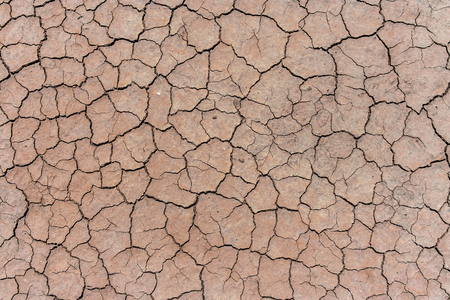 Cracked and dried mud texture