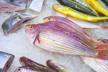 whole fresh fishes are offered in the fish market in asia Foto de archivo - 105268874