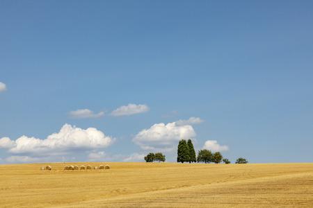 Paysage rural avec champ après récolte et balle de paille sous le ciel bleu
