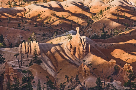 beautiful landscape in Bryce Canyon with magnificent Stone formation like Amphitheater, temples, figures in afternoon ligh