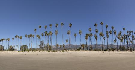 scenic beach at Santa Barbara with palm trees Stock Photo