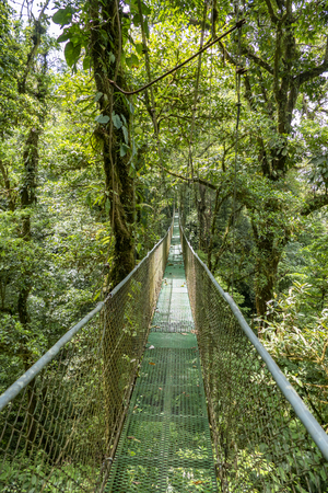 hanging bridge in the jungle near Monteverde in Costa Rica Фото со стока